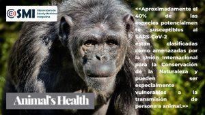 Clasificación de 410 especies animales según su sensibilidad al coronavirus